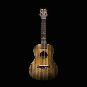 Portfolio-Cover-ukulele