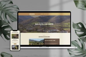 site-internet-oronos
