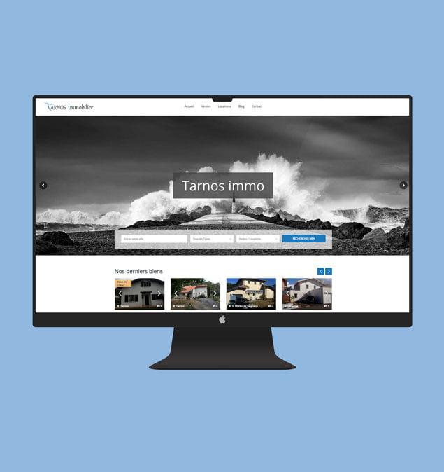 tarnosimmo-site-web-porfolio