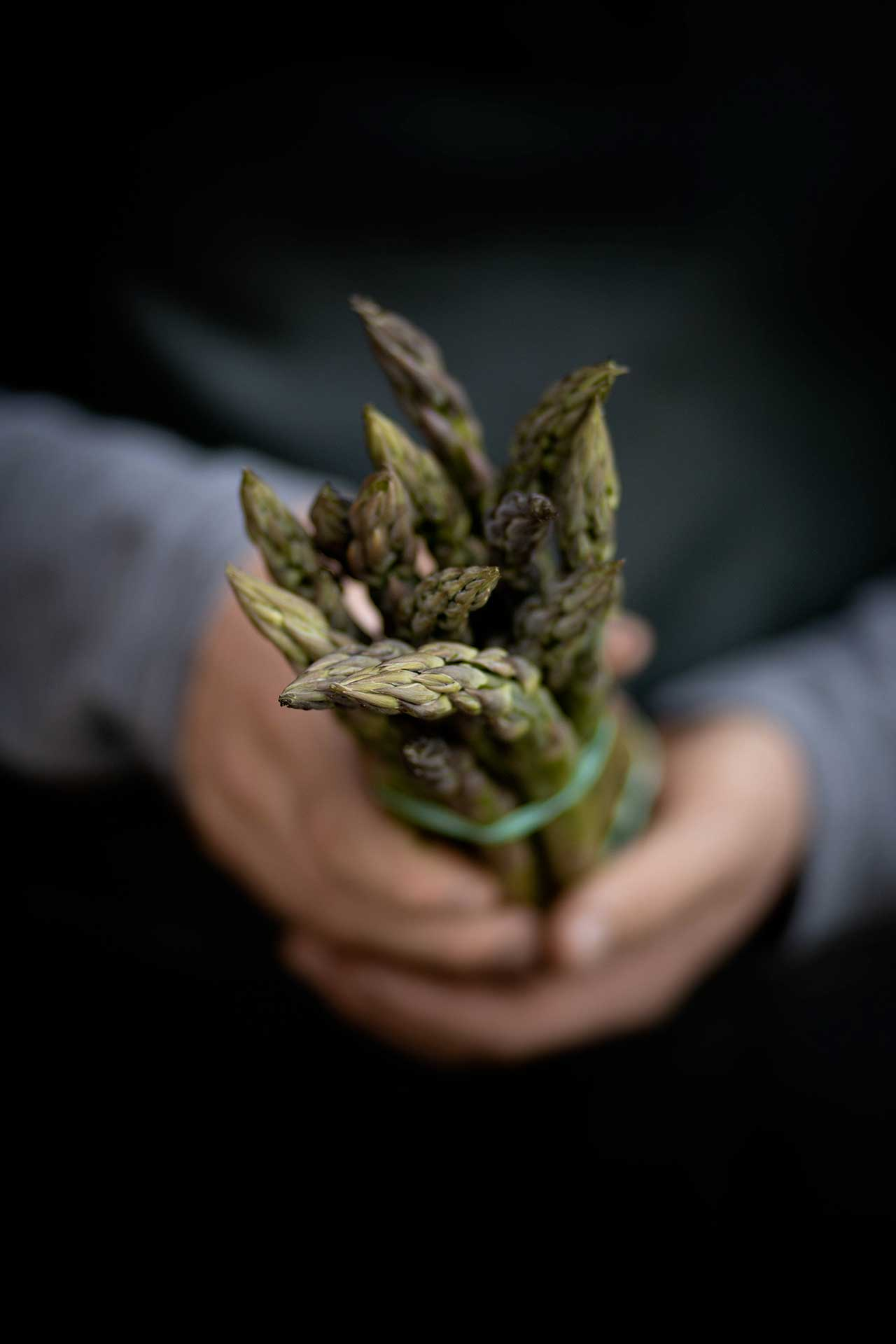 photo-asperge-mathio